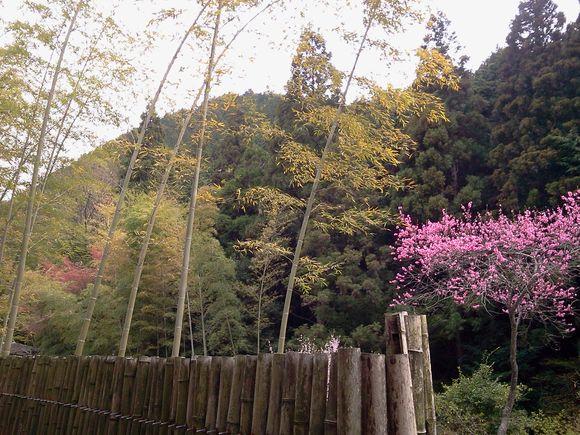2011-04-21 14.19.50.jpg